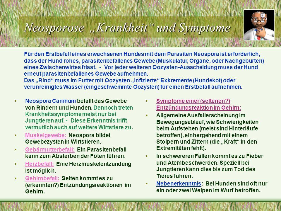 """Neosporose """"Krankheit und Symptome"""