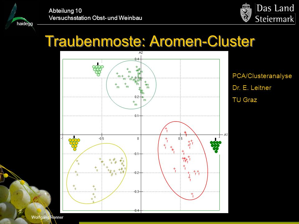 Traubenmoste: Aromen-Cluster