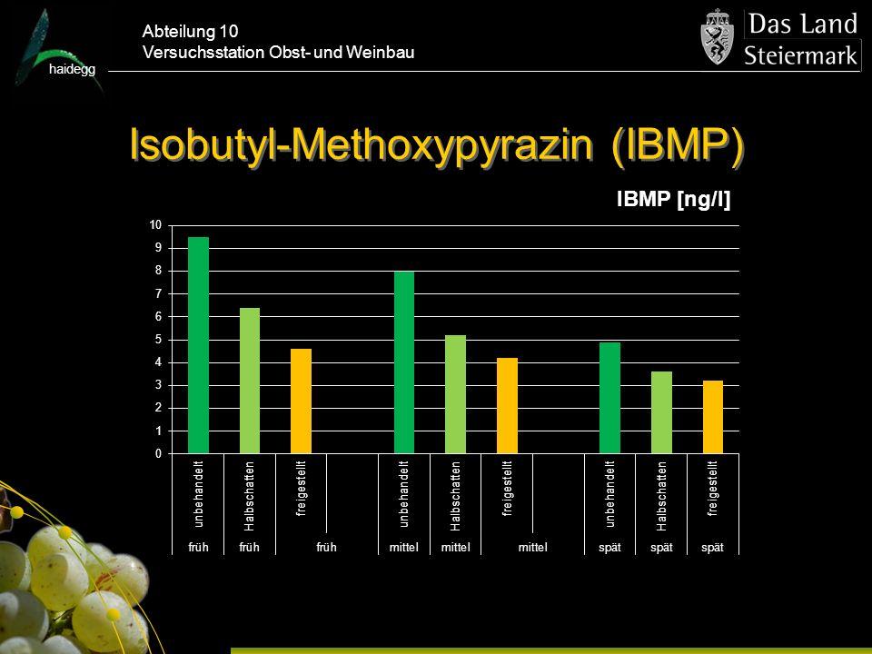 Isobutyl-Methoxypyrazin (IBMP)