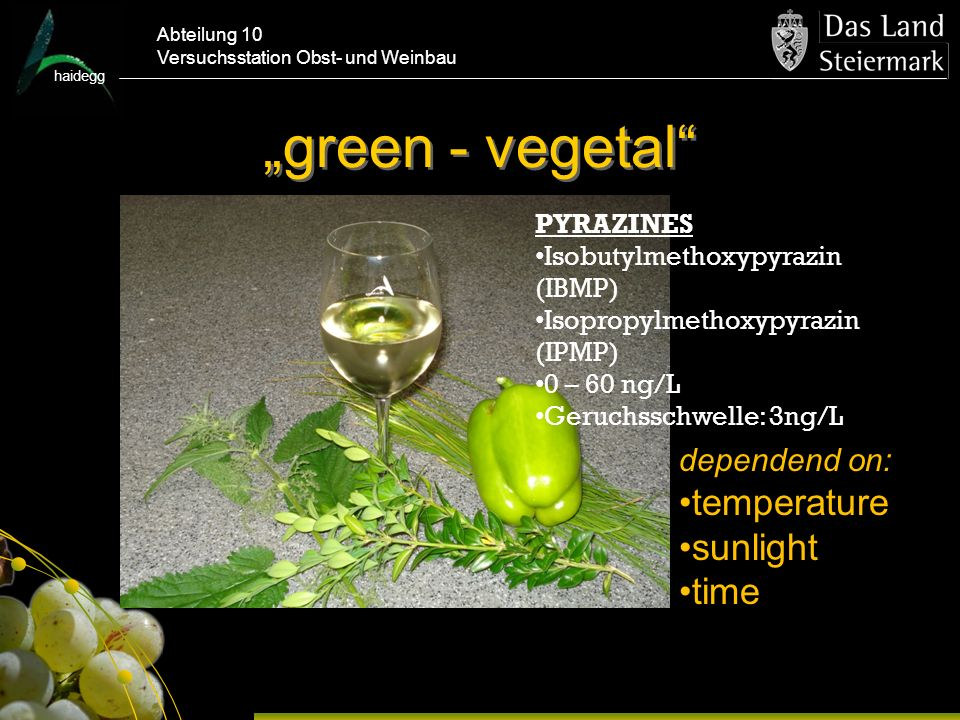 """green - vegetal temperature sunlight time dependend on: PYRAZINES"