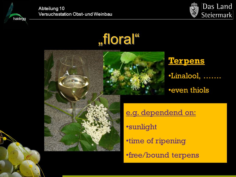 """floral Terpens Linalool, ……. even thiols e.g. dependend on: sunlight"