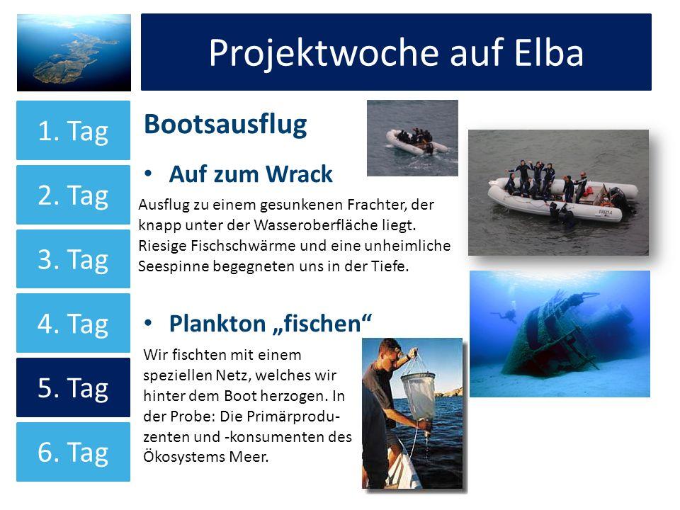 Projektwoche auf Elba Projektwoche auf Elba Bootsausflug 1. Tag 2. Tag