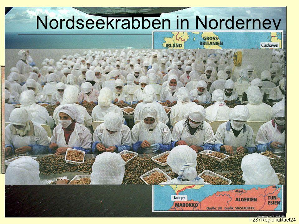 Nordseekrabben in Norderney