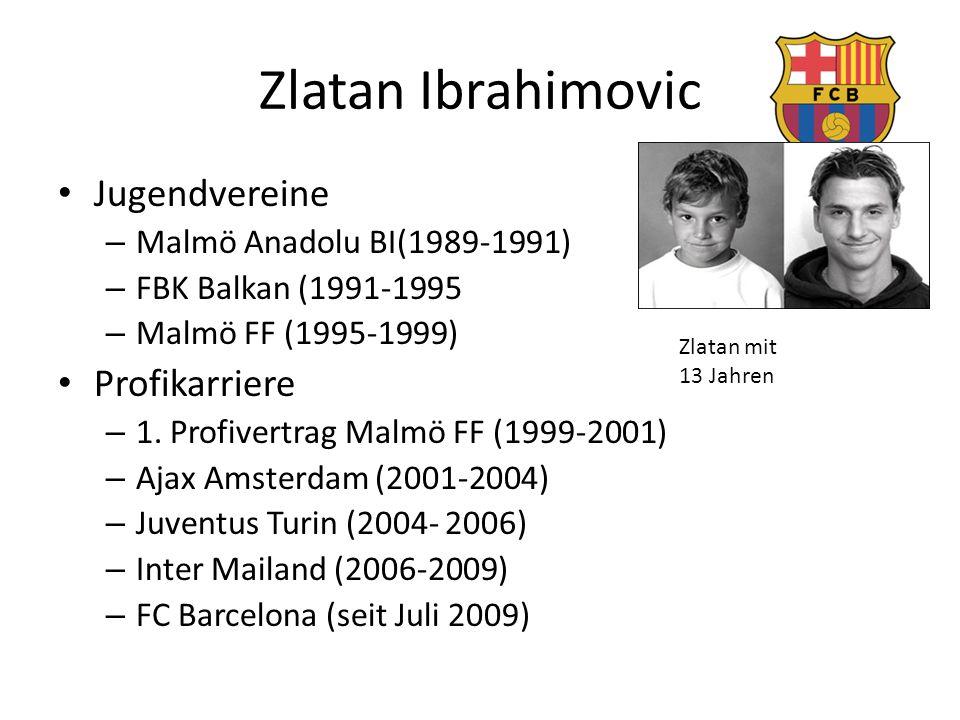 Zlatan Ibrahimovic Jugendvereine Profikarriere