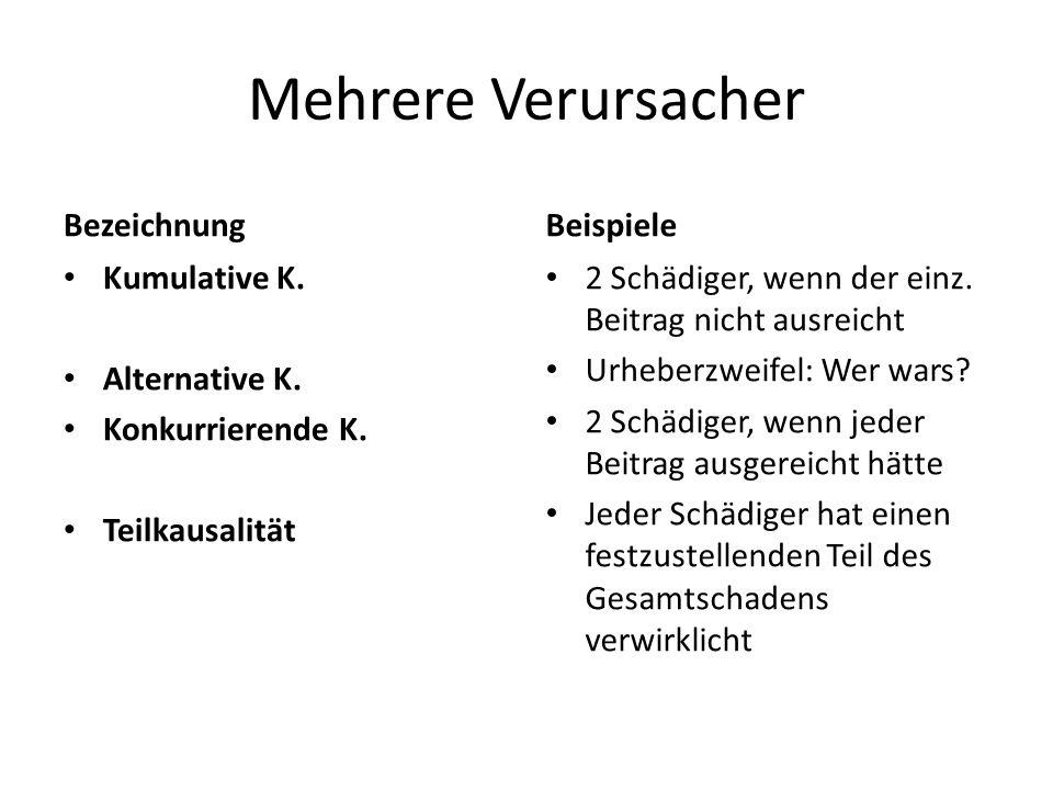 Mehrere Verursacher Bezeichnung Beispiele Kumulative K. Alternative K.