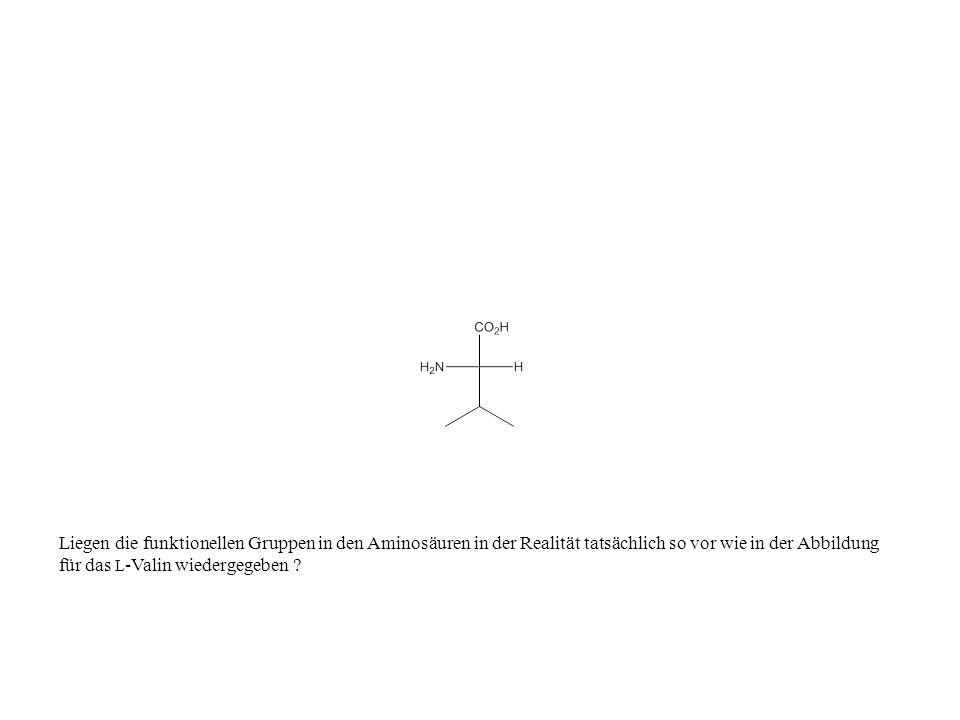 Liegen die funktionellen Gruppen in den Aminosäuren in der Realität tatsächlich so vor wie in der Abbildung für das L-Valin wiedergegeben