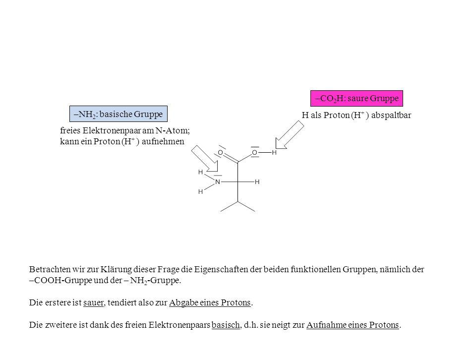 –CO2H: saure Gruppe –NH2: basische Gruppe. H als Proton (H+ ) abspaltbar. freies Elektronenpaar am N-Atom;