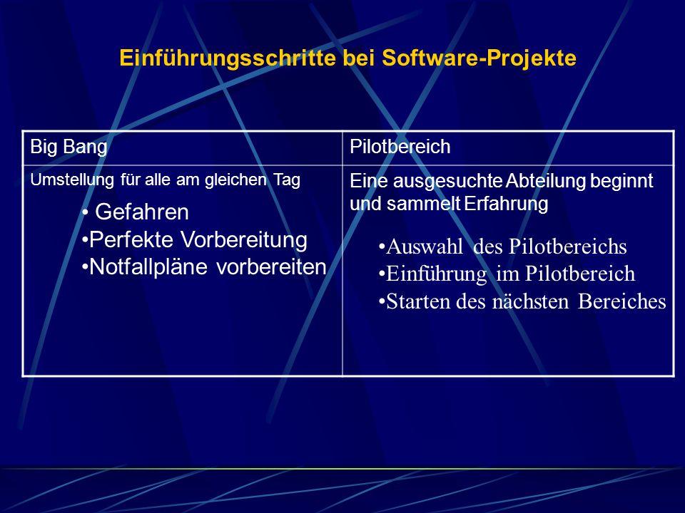 Einführungsschritte bei Software-Projekte