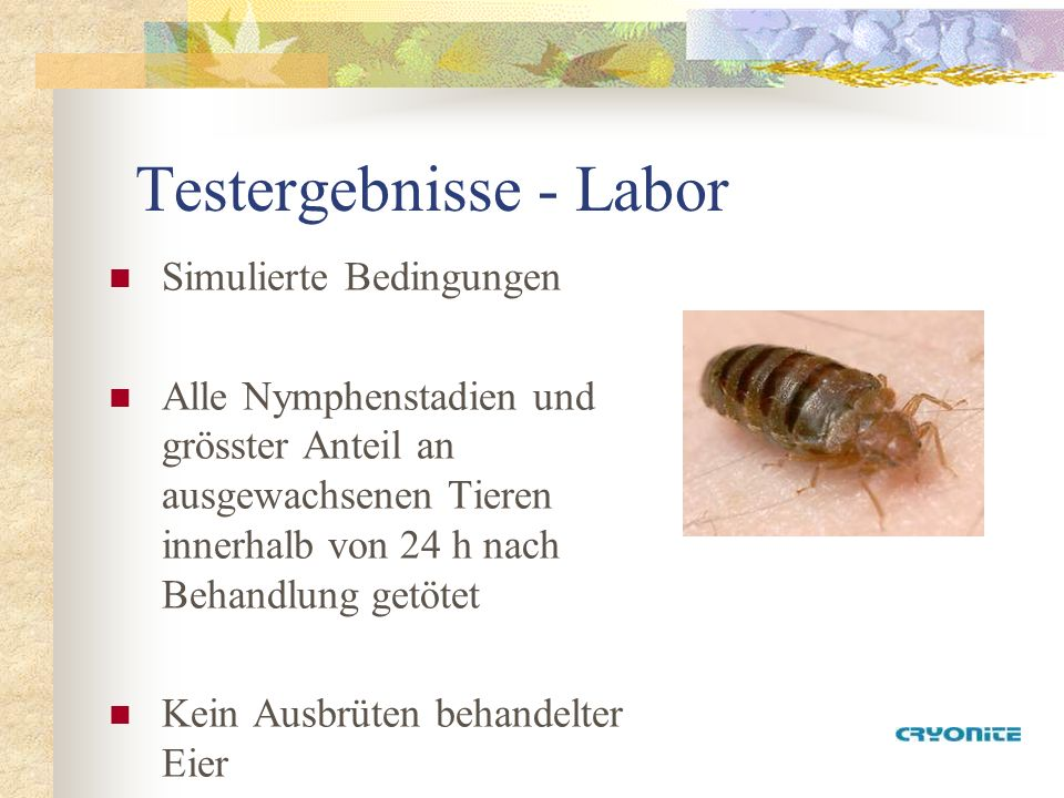 Testergebnisse - Labor