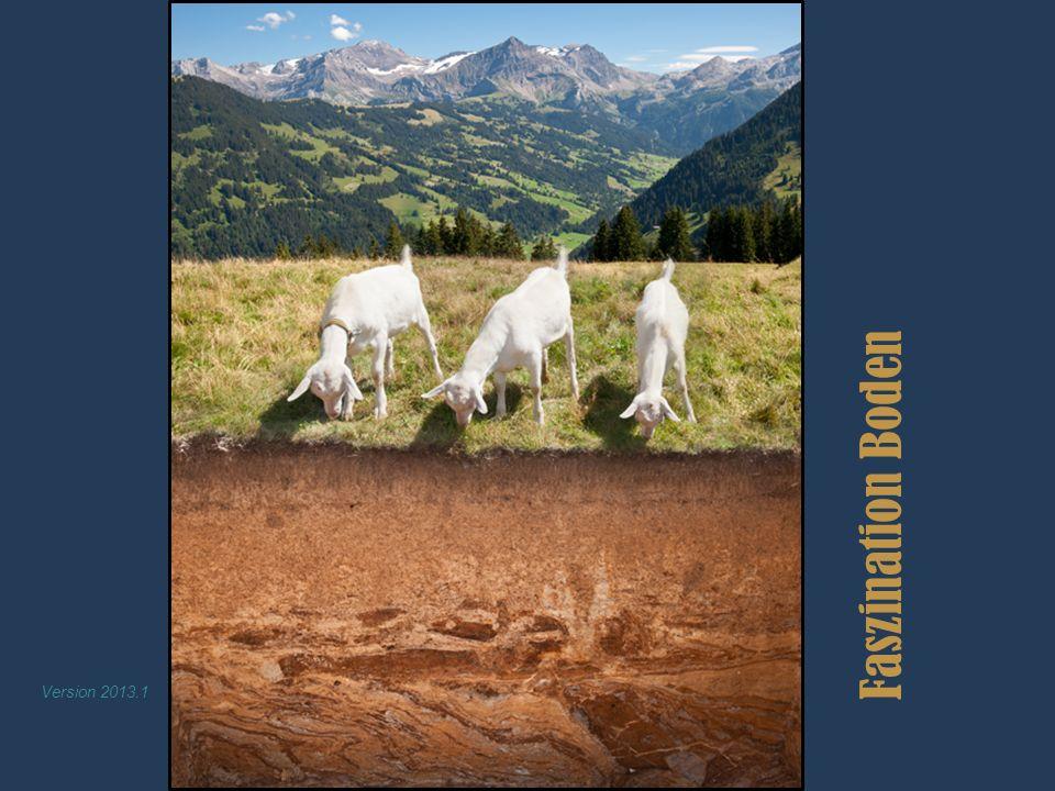 Faszination Boden Version 2013.1