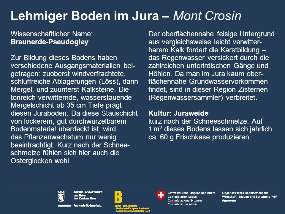 Lehmiger Boden im Jura – Mont Crosin