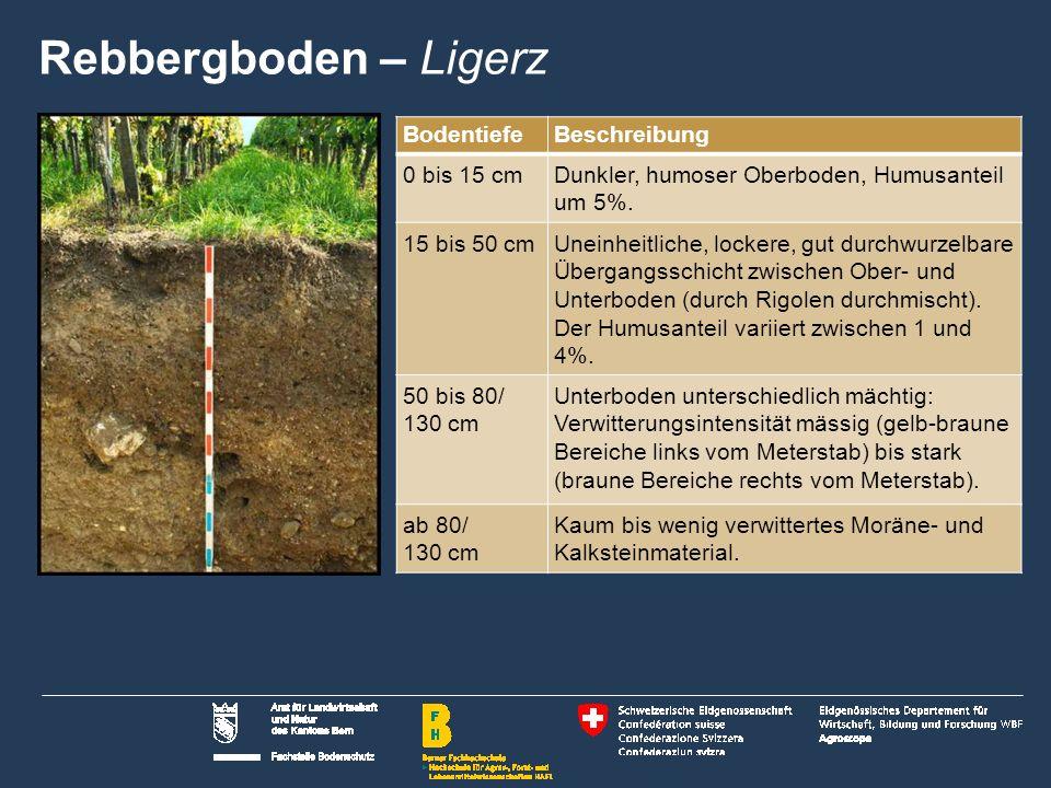 Rebbergboden – Ligerz Bodentiefe Beschreibung 0 bis 15 cm