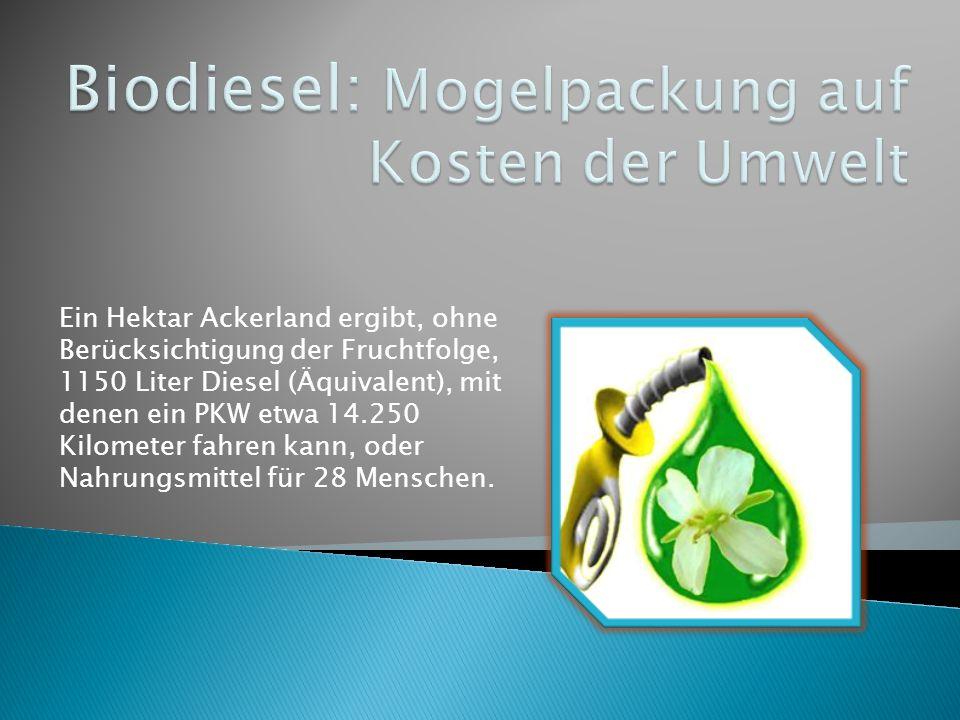 Biodiesel: Mogelpackung auf Kosten der Umwelt