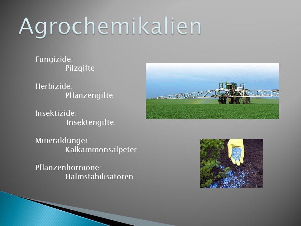 Agrochemikalien Fungizide: Pilzgifte Herbizide: Pflanzengifte