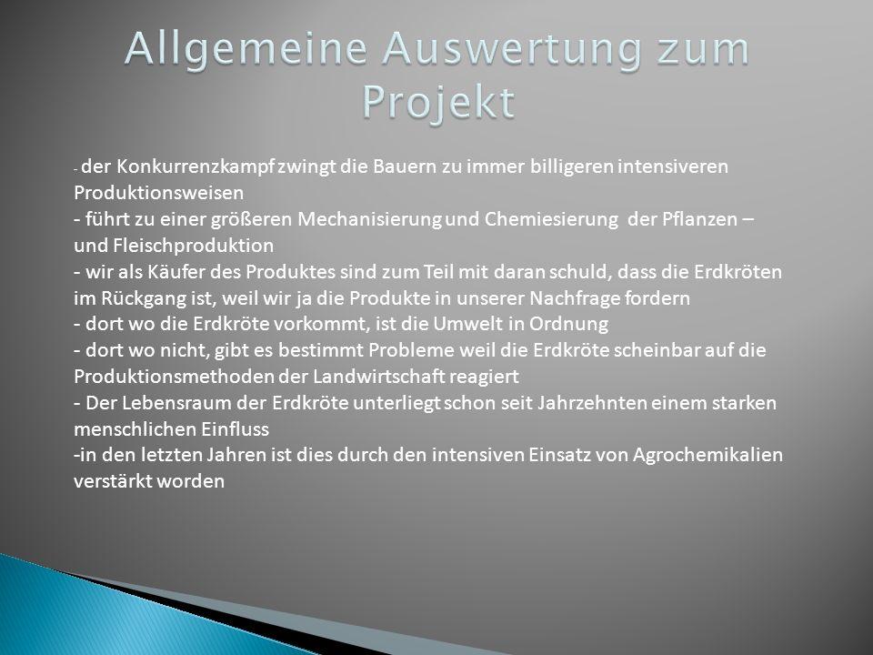 Allgemeine Auswertung zum Projekt