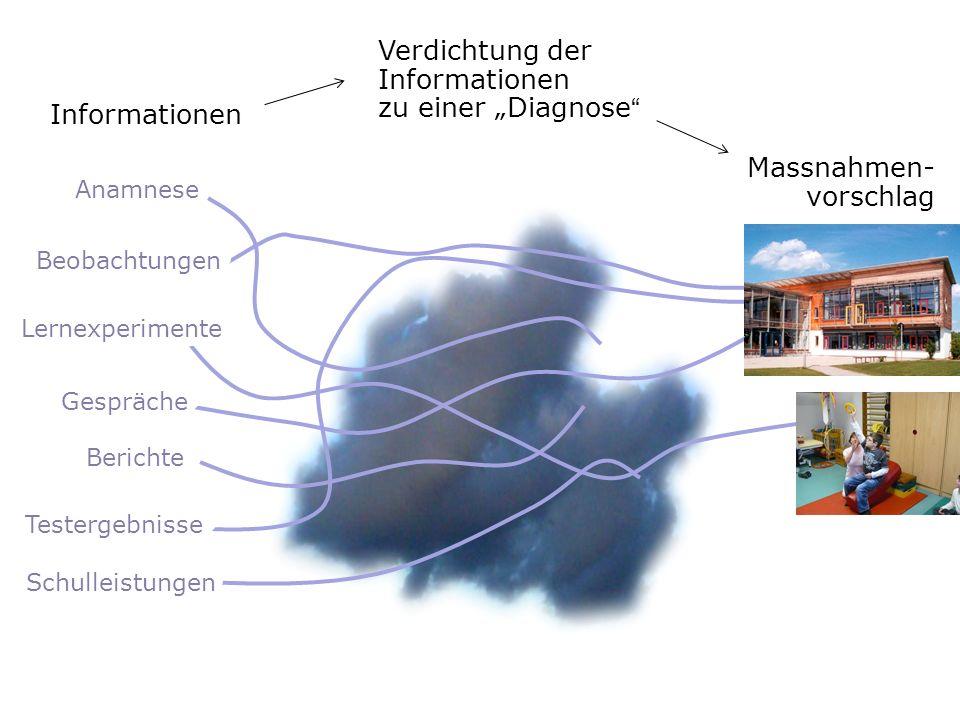 """Verdichtung der Informationen zu einer """"Diagnose"""
