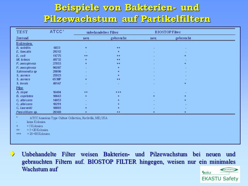 Beispiele von Bakterien- und Pilzewachstum auf Partikelfiltern