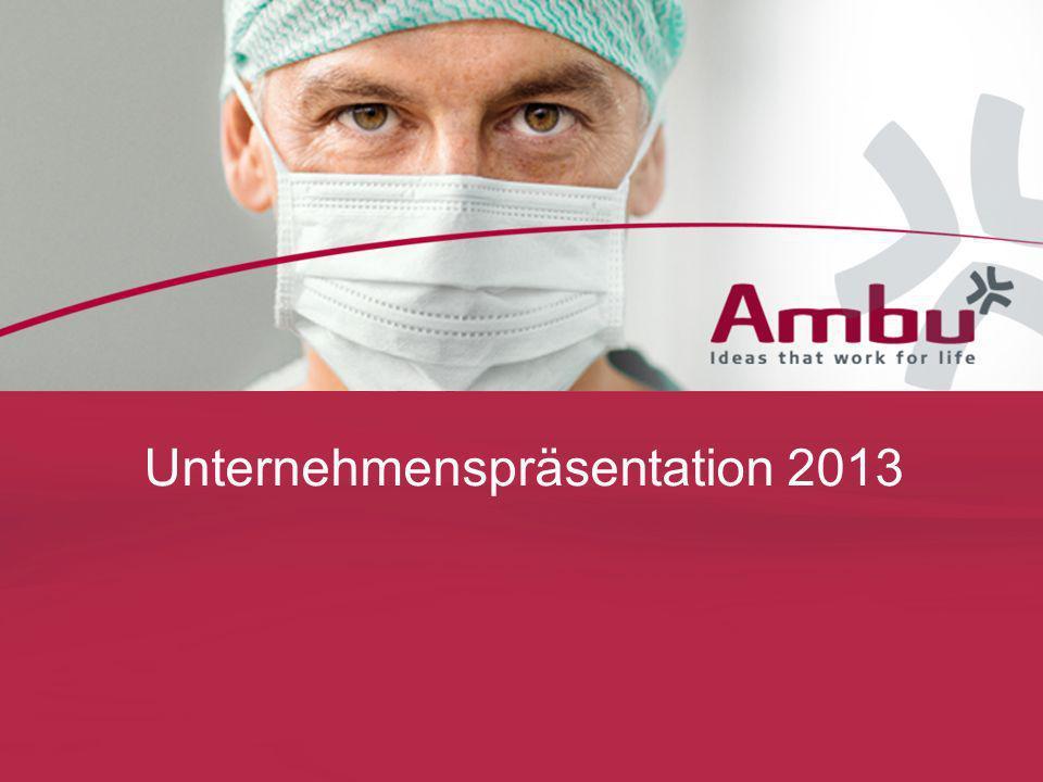 Unternehmenspräsentation 2013