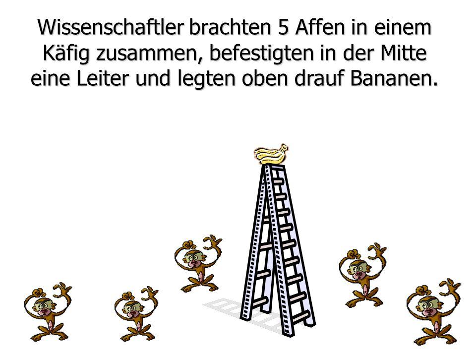 eine Leiter und legten oben drauf Bananen.