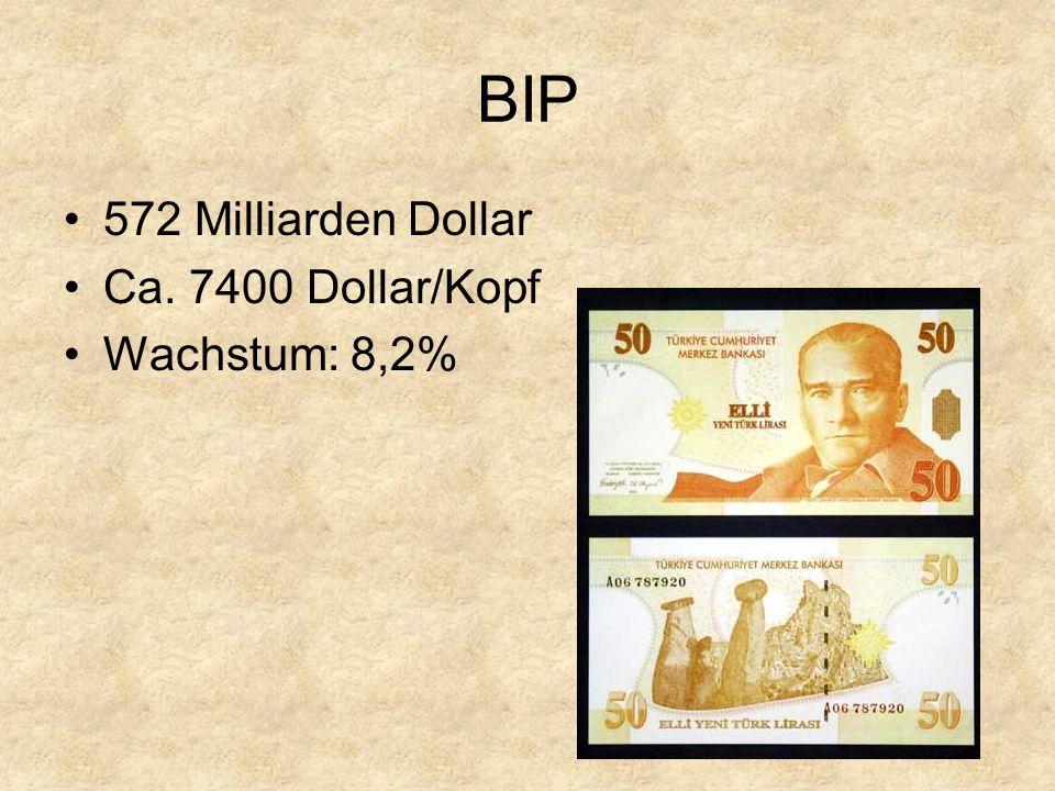 BIP 572 Milliarden Dollar Ca. 7400 Dollar/Kopf Wachstum: 8,2%