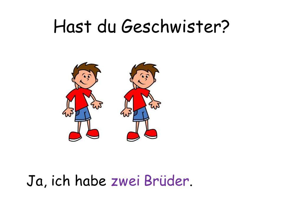 Hast du Geschwister Ja, ich habe zwei Brüder.
