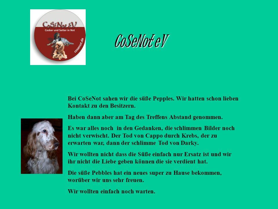CoSeNot eV Bei CoSeNot sahen wir die süße Pepples. Wir hatten schon lieben Kontakt zu den Besitzern.