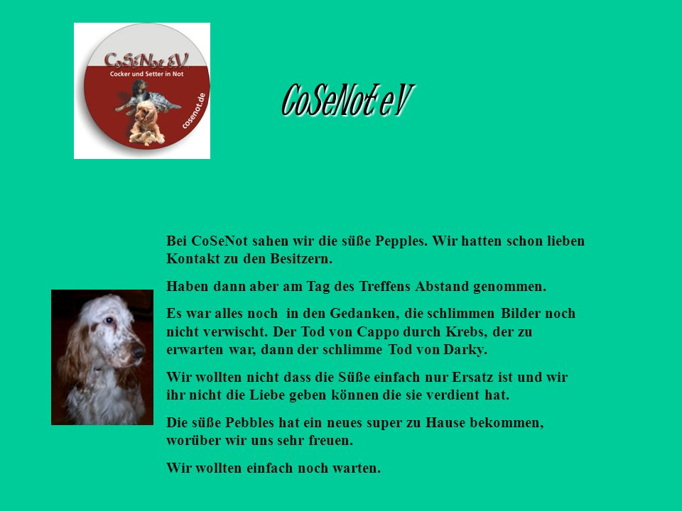 CoSeNot eVBei CoSeNot sahen wir die süße Pepples. Wir hatten schon lieben Kontakt zu den Besitzern.