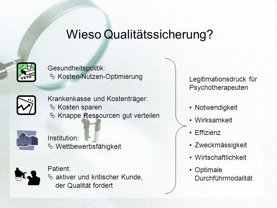 Wieso Qualitätssicherung