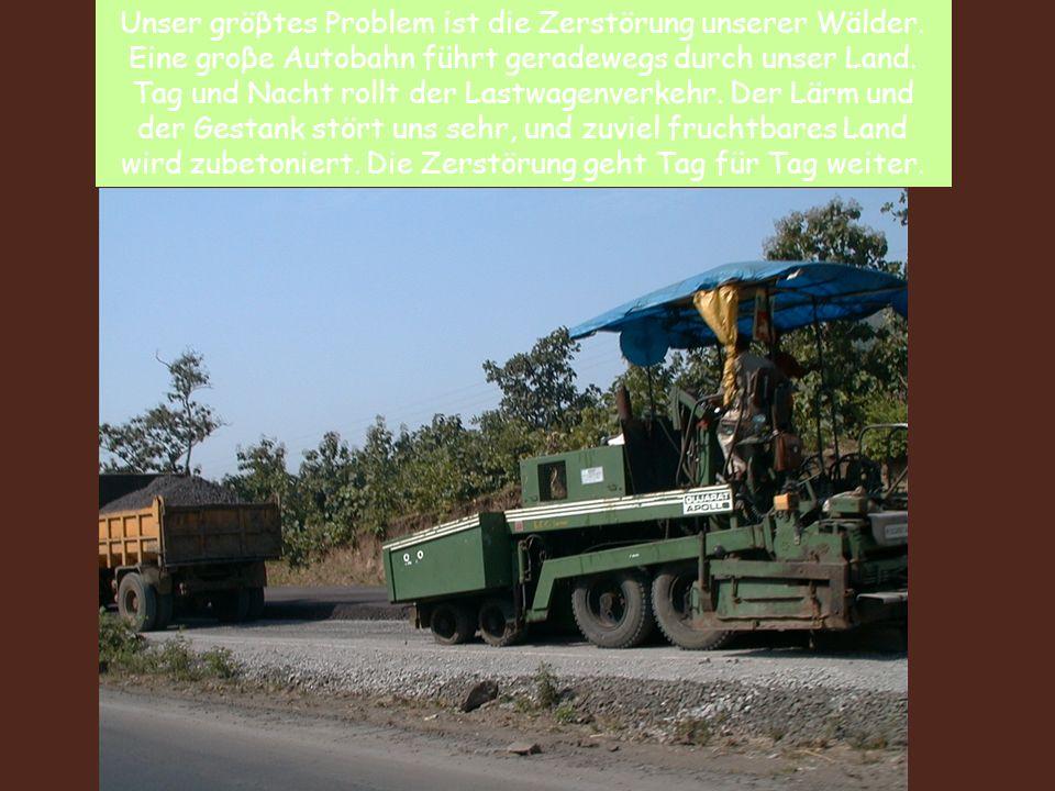 Unser gröβtes Problem ist die Zerstörung unserer Wälder