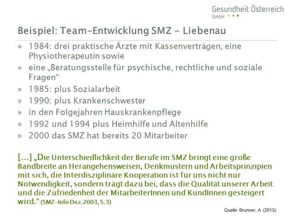 Beispiel: Team-Entwicklung SMZ - Liebenau