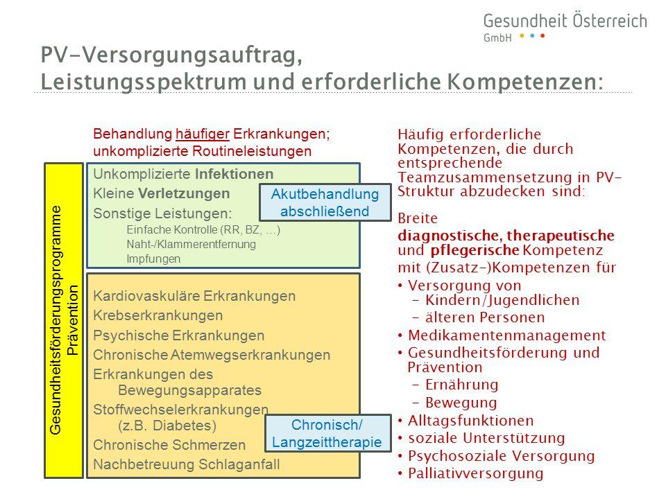PV-Versorgungsauftrag, Leistungsspektrum und erforderliche Kompetenzen: