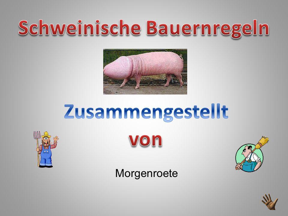 Schweinische Bauernregeln