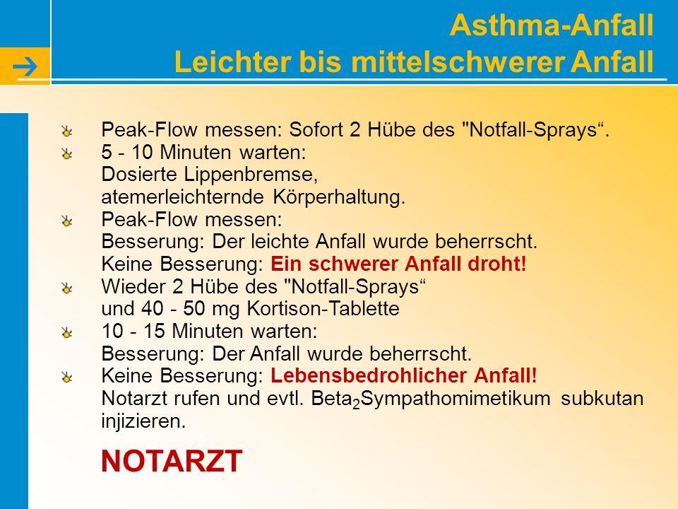 Asthma-Anfall Leichter bis mittelschwerer Anfall