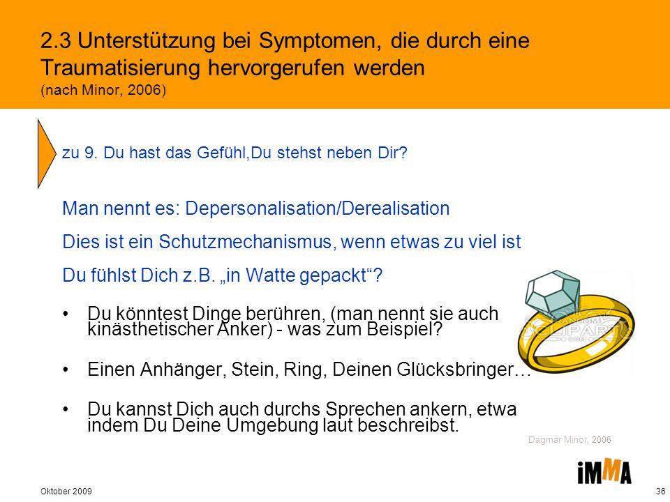 2.3 Unterstützung bei Symptomen, die durch eine Traumatisierung hervorgerufen werden (nach Minor, 2006)
