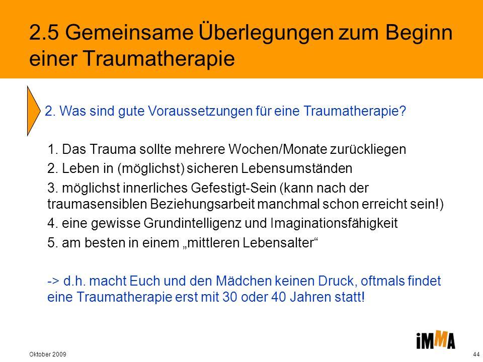 2.5 Gemeinsame Überlegungen zum Beginn einer Traumatherapie