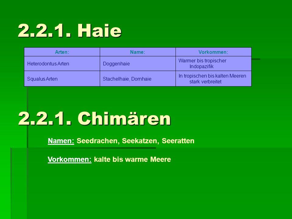 2.2.1. Haie 2.2.1. Chimären Namen: Seedrachen, Seekatzen, Seeratten