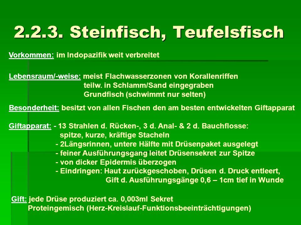 2.2.3. Steinfisch, Teufelsfisch