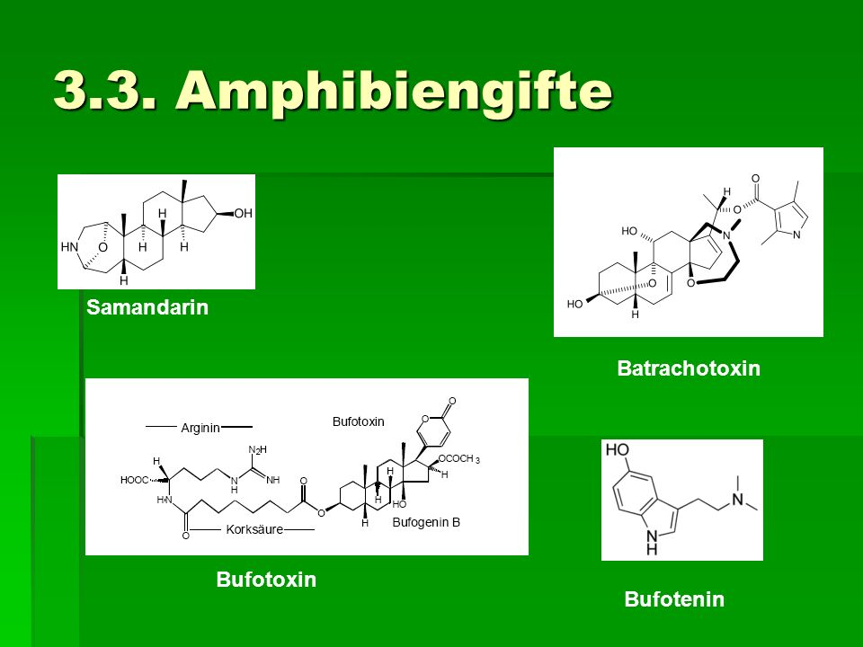 3.3. Amphibiengifte Samandarin Batrachotoxin Bufotoxin Bufotenin