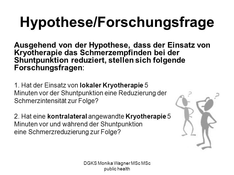 Hypothese/Forschungsfrage