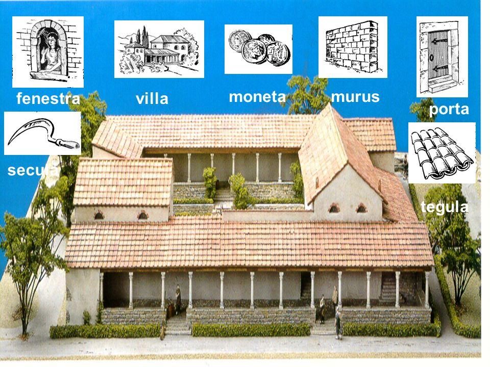 fenestra villa moneta murus porta secula tegula