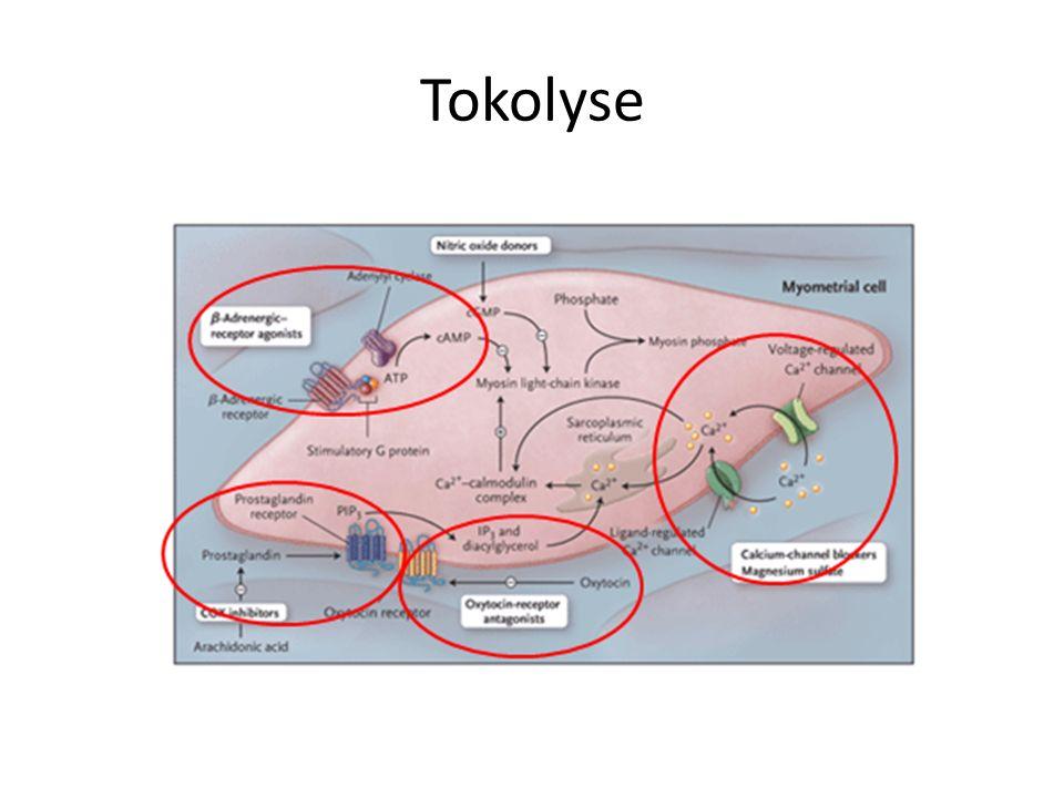 Tokolyse