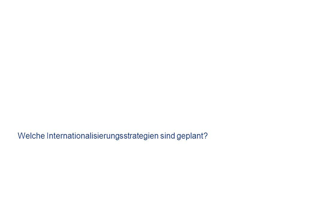 Welche Internationalisierungsstrategien sind geplant