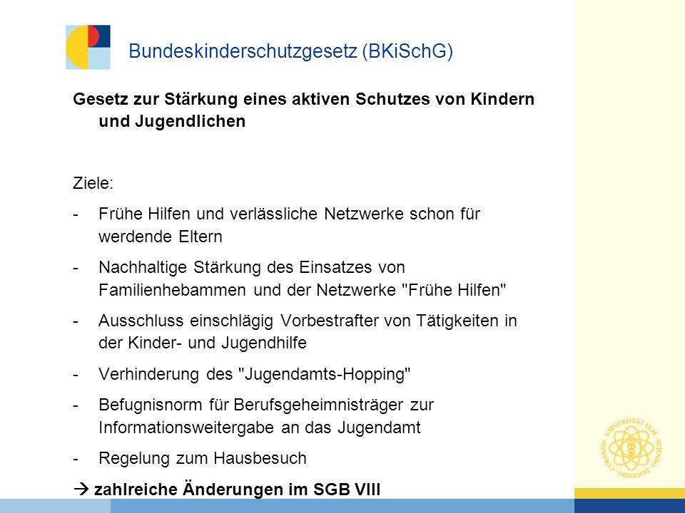 Bundeskinderschutzgesetz (BKiSchG)