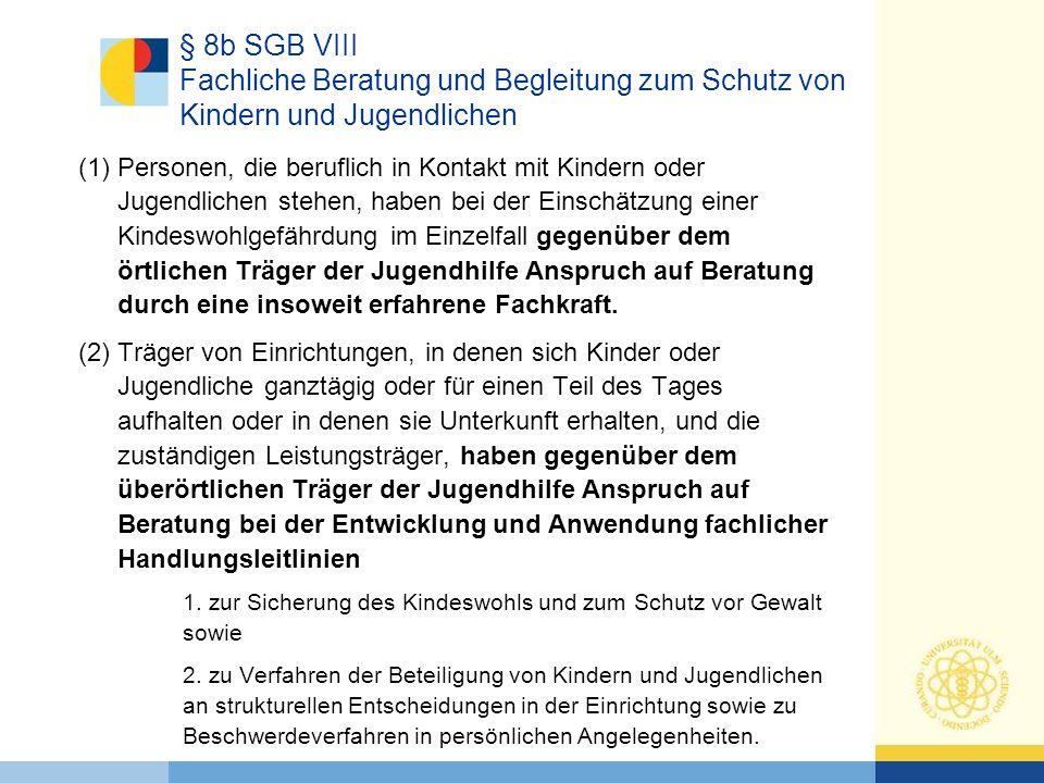 § 8b SGB VIII Fachliche Beratung und Begleitung zum Schutz von Kindern und Jugendlichen
