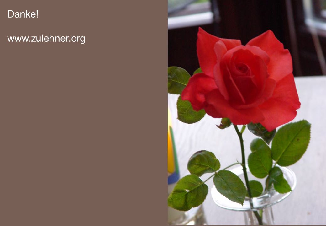 Danke! www.zulehner.org