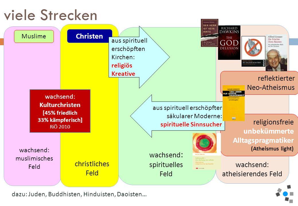 viele Strecken wachsend: spirituelles Feld wachsend: Christen