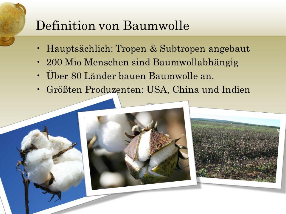 Definition von Baumwolle
