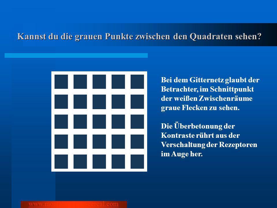 Kannst du die grauen Punkte zwischen den Quadraten sehen