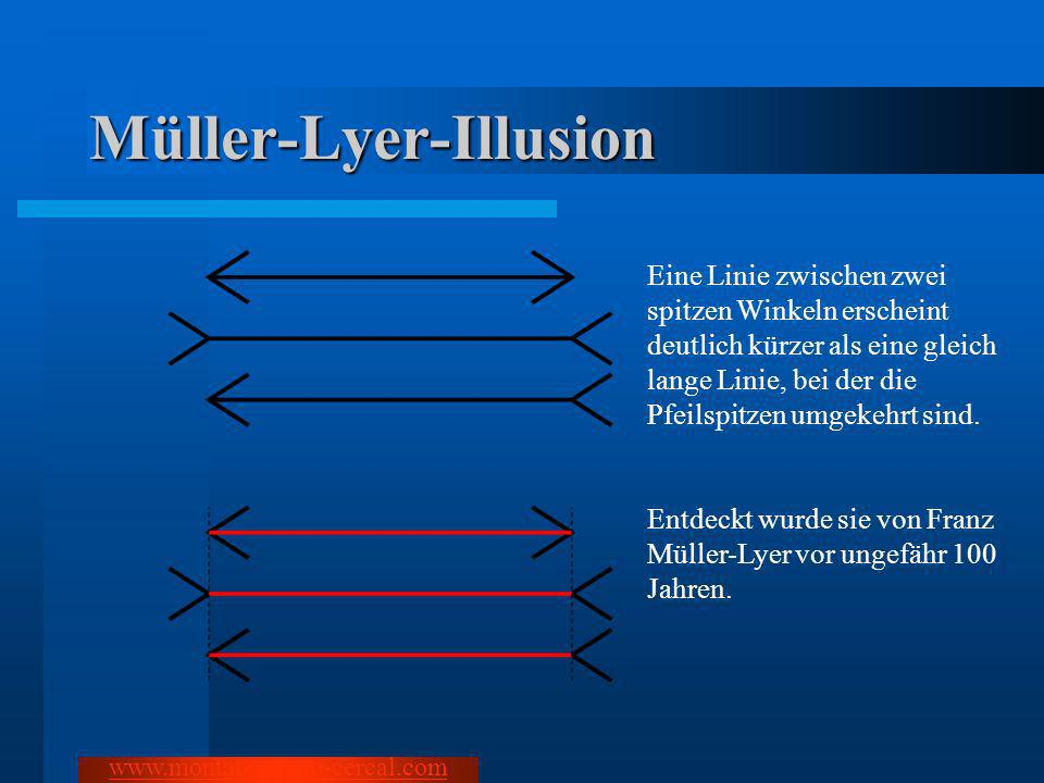 Müller-Lyer-Illusion