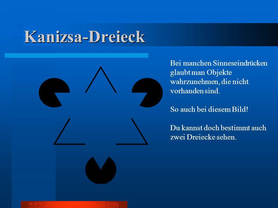 Kanizsa-DreieckBei manchen Sinneseindrücken glaubt man Objekte wahrzunehmen, die nicht vorhanden sind.